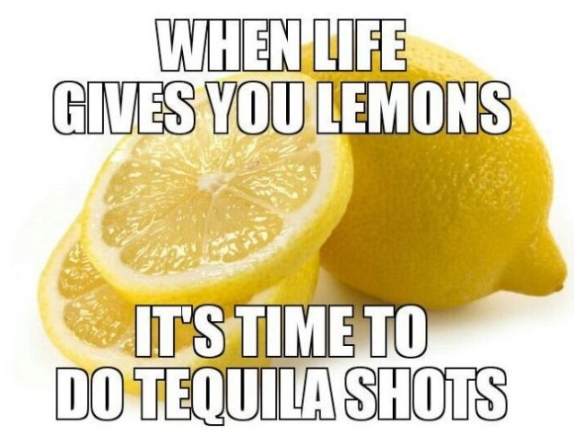 MEMES-2014-When-Life-Gives-You-Lemons