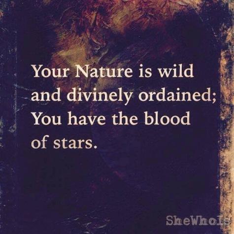 NATURE IS WILD