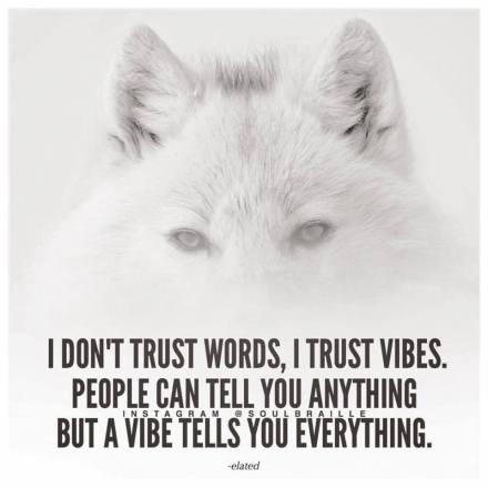 TRUST VIBES.jpg