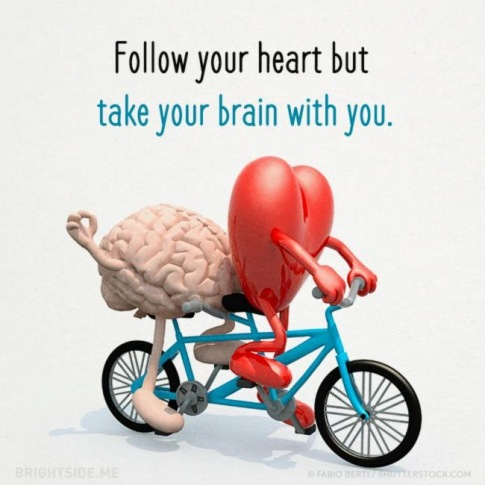 TAKE YOUR BRAIN WITH YOU.JPG