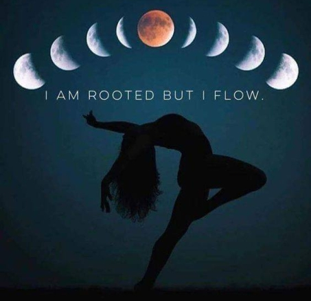 ROOTED FLOW