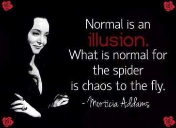 NORMAL ILLUSION.jpg